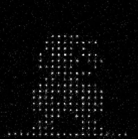 哈佛联合MIT实现256个量子比特模拟器或标志人类进入量子世界新领域